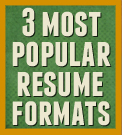 Three most popular resmue formats