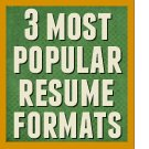 Three most popular resmue formats