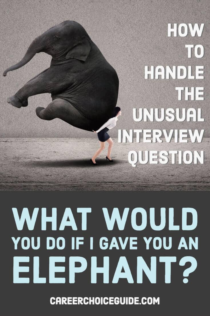 Business woman carrying an elephant. Text overlay - How to handle the unusual interview question, What would you do if I gave you an elephant?